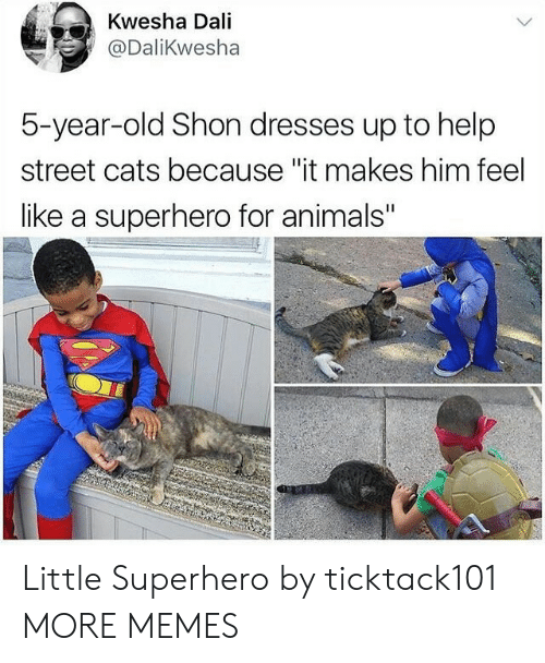 "Animals, Cats, and Dank: Kwesha Dali  @DaliKwesha  5-year-old Shon dresses up to help  street cats because ""it makes him feel  like a superhero for animals"" Little Superhero by ticktack101 MORE MEMES"