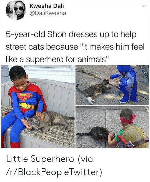"Animals, Blackpeopletwitter, and Cats: Kwesha Dali  @DaliKwesha  5-year-old Shon dresses up to help  street cats because ""it makes him feel  like a superhero for animals"" Little Superhero (via /r/BlackPeopleTwitter)"