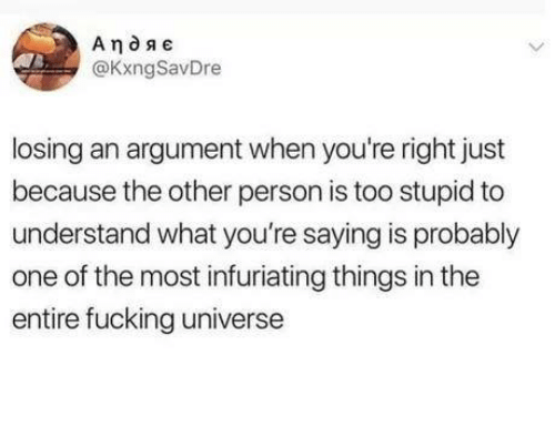 Too Stupid: @KxngSavDre  losing an argument when you're right just  because the other person is too stupid to  understand what you're saying is probably  one of the most infuriating things in the  entire fucking universe