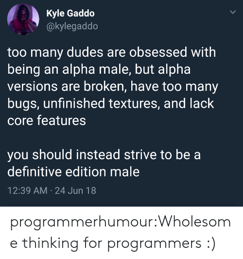 too many: Kyle Gaddo  @kylegaddo  too many dudes are obsessed with  being an alpha male, but alpha  versions are broken, have too many  bugs, unfinished textures, and lack  core features  you should instead strive to be a  definitive edition male  12:39 AM 24 Jun 18  > programmerhumour:Wholesome thinking for programmers :)