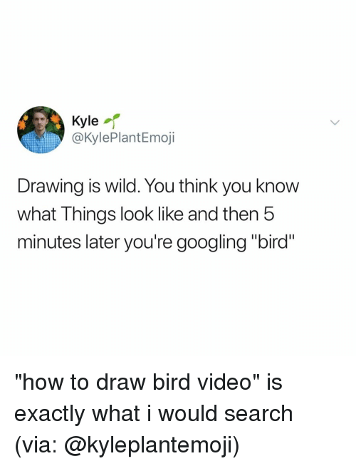 "How To, Search, and Video: Kyle  @KylePlantEmoji  Drawing is wild. You think you know  what Things look like and then 5  minutes later you're googling ""bird"" ""how to draw bird video"" is exactly what i would search (via: @kyleplantemoji)"