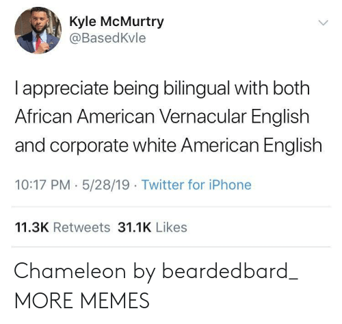 Dank, Iphone, and Memes: Kyle McMurtry  @BasedKvle  I appreciate being bilingual with both  African American Vernacular English  and corporate white American English  10:17 PM 5/28/19 Twitter for iPhone  11.3K Retweets 31.1K Likes Chameleon by beardedbard_ MORE MEMES