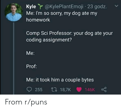 bytes: Kyle r@KylePlantEmoji 23 godz.  Me: I'm so sorry, my dog ate my  homework  Comp Sci Professor: your dog ate your  coding assignment?  Me:  Prof:  Me: it took him a couple bytes From r/puns