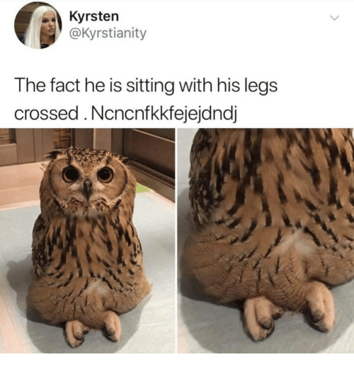 Memes, 🤖, and Sitting: Kyrsten  @Kyrstianity  The fact he is sitting with his legs  crossed.Ncncnfkkfejejdndj