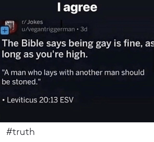 """Lay's, Bible, and Jokes: l agree  /Jokes  u/vegantriggerman 3d  The Bible says being gay is fine, as  long as you're high.  """"A man who lays with another man should  be stoned.""""  Leviticus 20:13 ESV #truth"""