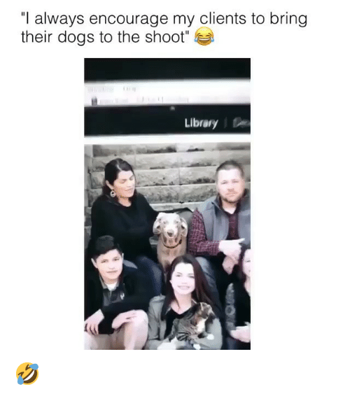 """Dogs, Ironic, and Library: """"l always encourage my clients to bring  their dogs to the shoot  Library 🤣"""