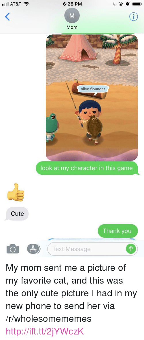 "Cute, Phone, and Thank You: l AT&T  6:28 PM  Mom  olive flounder  look at my character in this game  Cute  Thank you  o  es) ( Text Message <p>My mom sent me a picture of my favorite cat, and this was the only cute picture I had in my new phone to send her via /r/wholesomememes <a href=""http://ift.tt/2jYWczK"">http://ift.tt/2jYWczK</a></p>"