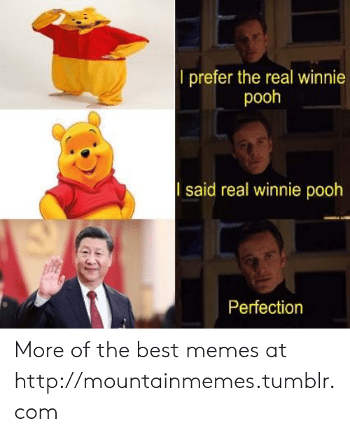 perfection: l prefer the real winnie  pooh  said real winnie pooh  Perfection More of the best memes at http://mountainmemes.tumblr.com