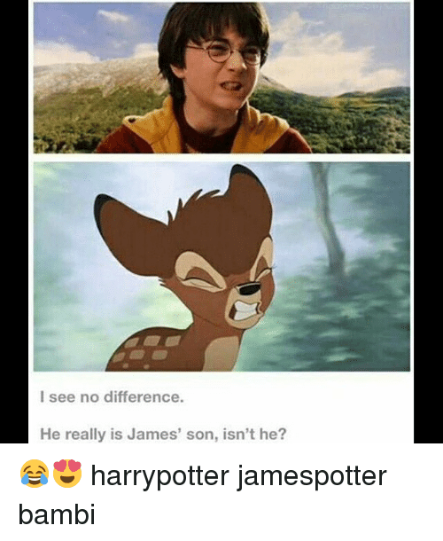 Bambi: l see no difference  He really is James' son, isn't he? 😂😍 harrypotter jamespotter bambi
