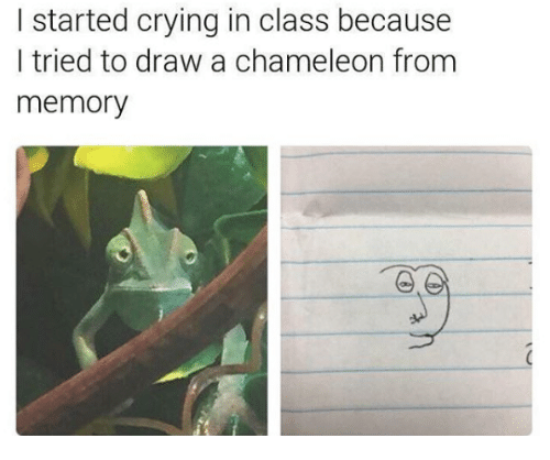 Crying, Chameleon, and Class: l started crying in class because  I tried to draw a chameleon from  memory
