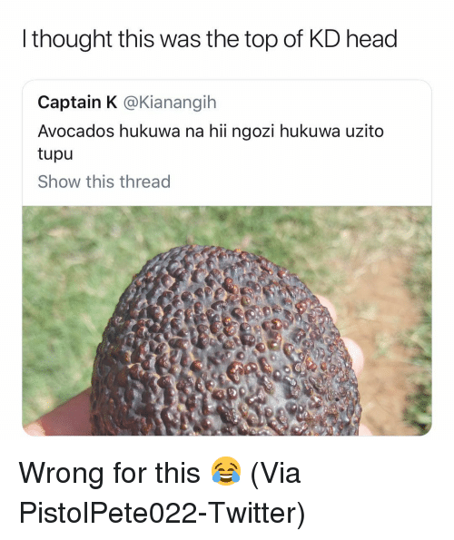 Basketball, Head, and Nba: l thought this was the top of KD head  Captain K @Kianangih  Avocados hukuwa na hii ngozi hukuwa uzito  tupu  Show this thread Wrong for this 😂 (Via ‪PistolPete022‬-Twitter)