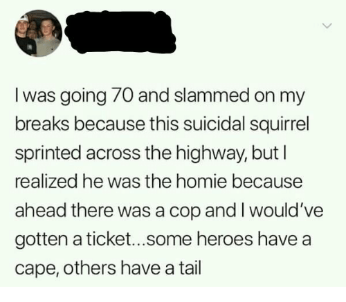 Dank, Homie, and Heroes: l was going 70 and slammed on my  breaks because this suicidal squirrel  sprinted across the highway, but l  realized he was the homie because  ahead there was a cop and I would've  gotten a ticket...some heroes have a  cape, others have a tail