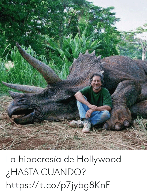hollywood: La hipocresía de Hollywood  ¿HASTA CUANDO? https://t.co/p7jybg8KnF