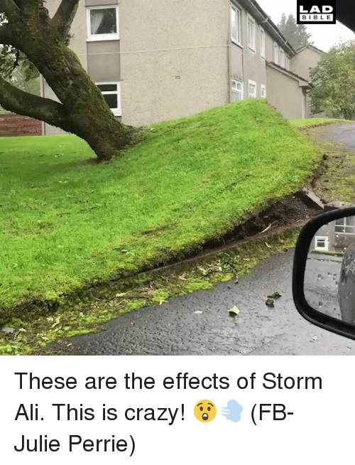 This Is Crazy: LAD  BIBL E These are the effects of Storm Ali. This is crazy! 😲💨 (FB-Julie Perrie)