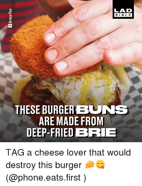 Memes, Phone, and Bible: LAD  BIBLE  CS  THESE BURGER BUNS  ARE MADE FROM  DEEP-FRIEDBRIE TAG a cheese lover that would destroy this burger 🧀😋 (@phone.eats.first )