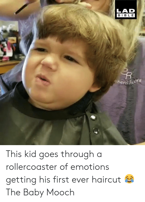 rollercoaster: LAD  BIBLE  hero Reots This kid goes through a rollercoaster of emotions getting his first ever haircut 😂  The Baby Mooch