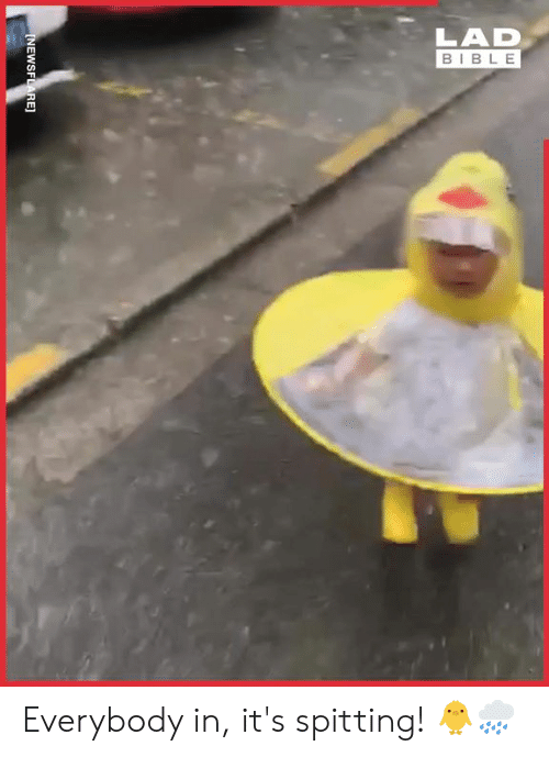 Spitting: LAD  BIBLE  INEWSFLARE] Everybody in, it's spitting! 🐥🌧