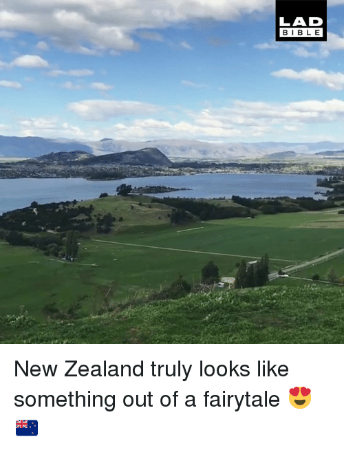 Dank, Bible, and New Zealand: LAD  BIBLE New Zealand truly looks like something out of a fairytale 😍🇳🇿