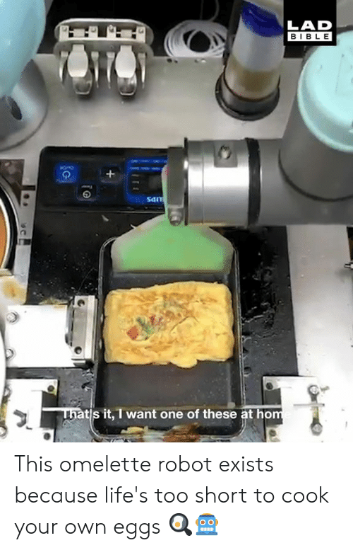 Dank, Bible, and Too Short: LAD  BIBLE  San  ni  tis it, I want one of these at ho This omelette robot exists because life's too short to cook your own eggs 🍳🤖