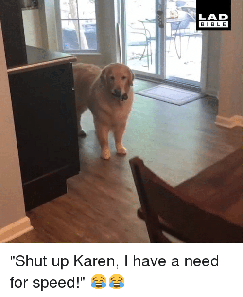 """Dank, Shut Up, and Bible: LAD  BIBLE """"Shut up Karen, I have a need for speed!"""" 😂😂"""