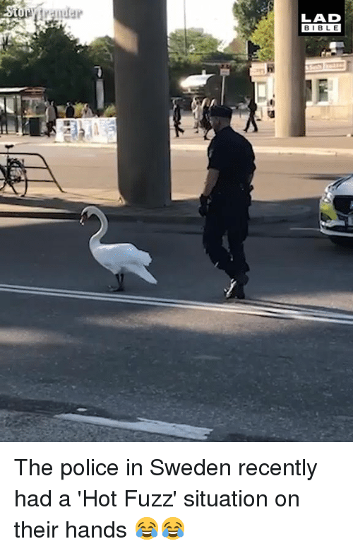 Dank, Police, and Bible: LAD  BIBLE The police in Sweden recently had a 'Hot Fuzz' situation on their hands 😂😂