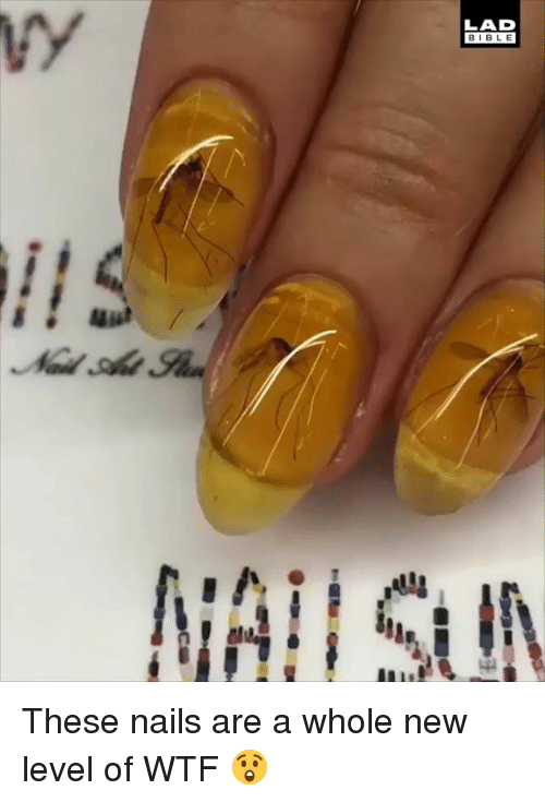 Dank, Wtf, and Bible: LAD  BIBLE These nails are a whole new level of WTF 😲
