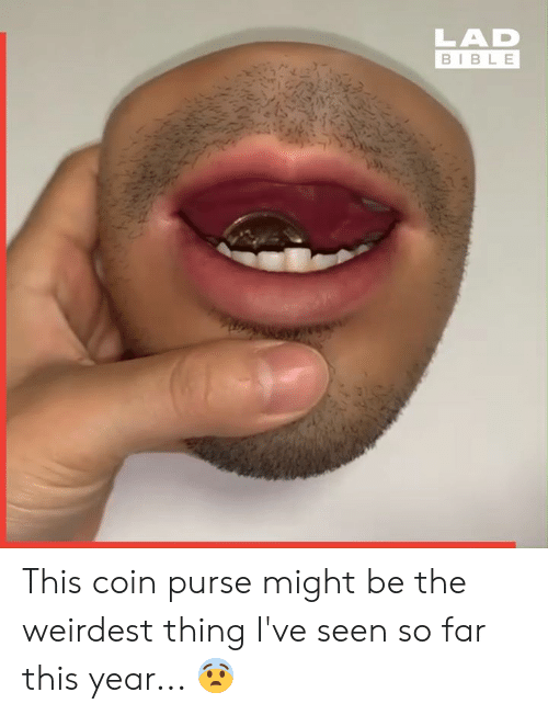purse: LAD  BIBLE This coin purse might be the weirdest thing I've seen so far this year... 😨