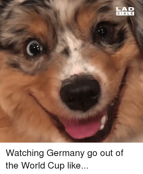 Dank, World Cup, and Bible: LAD  BIBLE Watching Germany go out of the World Cup like...