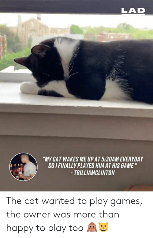 "Dank, Game, and Games: LAD  ""MY CAT WAKES ME UP AT 5:30AM EVERYDAY  SOI FINALLY PLAYED HIM AT HIS GAME ""  -TRILLIAMCLINTON The cat wanted to play games, the owner was more than happy to play too 🙊😺"