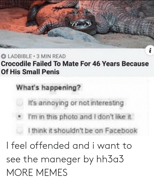 i want to see: LADBIBLE 3 MIN READ  Crocodile Failed To Mate For 46 Years Because  Of His Small Penis  What's happening?  It's annoying or not interesting  I'm in this photo and I don't like it  I think it shouldn't be on Facebook I feel offended and i want to see the maneger by hh3a3 MORE MEMES
