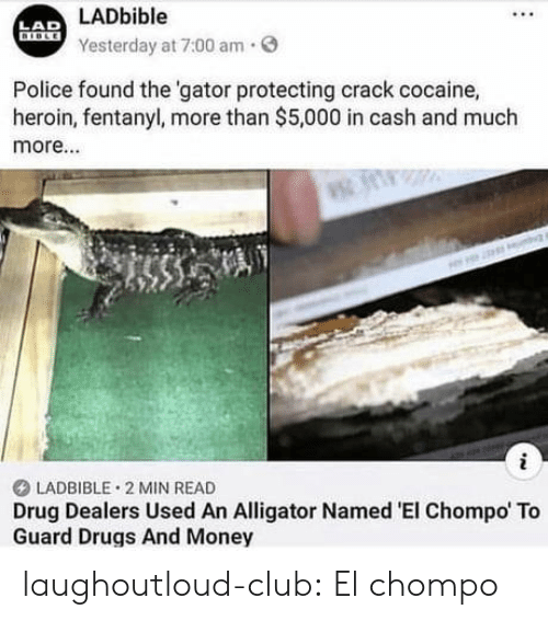 crack cocaine: LADbible  Yesterday at 7:00 am.  LAD  Police found the 'gator protecting crack cocaine,  heroin, fentanyl, more than $5,000 in cash and much  more...  LADBIBLE 2 MIN READ  Drug Dealers Used An Alligator Named 'EI Chompo To  Guard Drugs And Money laughoutloud-club:  El chompo