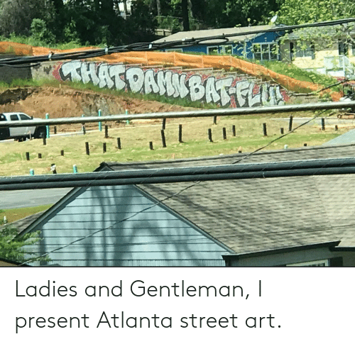 street: Ladies and Gentleman, I present Atlanta street art.
