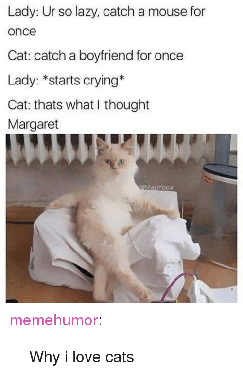 """love cats: Lady: Ur so lazy, catch a mouse for  once  Cat: catch a boyfriend for once  Lady: *starts crying*  Cat: thats what I thought  Margaret  @MasiPopal <p><a href=""""http://memehumor.net/post/171341743121/why-i-love-cats"""" class=""""tumblr_blog"""">memehumor</a>:</p>  <blockquote><p>Why i love cats</p></blockquote>"""