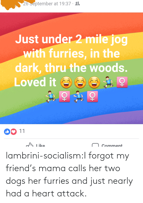Forgot: lambrini-socialism:I forgot my friend's mama calls her two dogs her furries and just nearly had a heart attack.