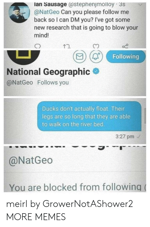Dank, Memes, and Target: lan Sausage @stephenjmolloy 3s  @NatGeo Can you please follow me  back so I can DM you? I've got some  new research that is going to blow your  mind!  D (0  Following  National Geographic  @NatGeo Follows you  Ducks don't actually float. Their  legs are so long that they are able  to walk on the river bed.  3:27 pm  @NatGeo  You are blocked from following meirl by GrowerNotAShower2 MORE MEMES