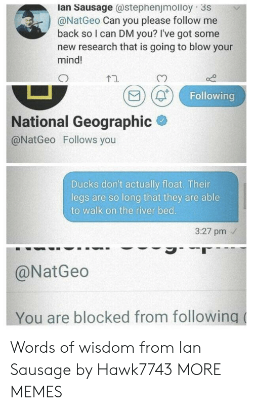 Dank, Memes, and Target: lan Sausage @stephenjmolloy 3S  @NatGeo Can you please follow me  back so I can DM you? I've got some  new research that is going to blow your  mind!  t1.  CO)  Following  National Geographic  @NatGeo Follows you  Ducks don't actually float. Their  legs are so long that they are able  to walk on the river bed.  3:27 pm  @NatGeo  You are blocked from following Words of wisdom from Ian Sausage by Hawk7743 MORE MEMES