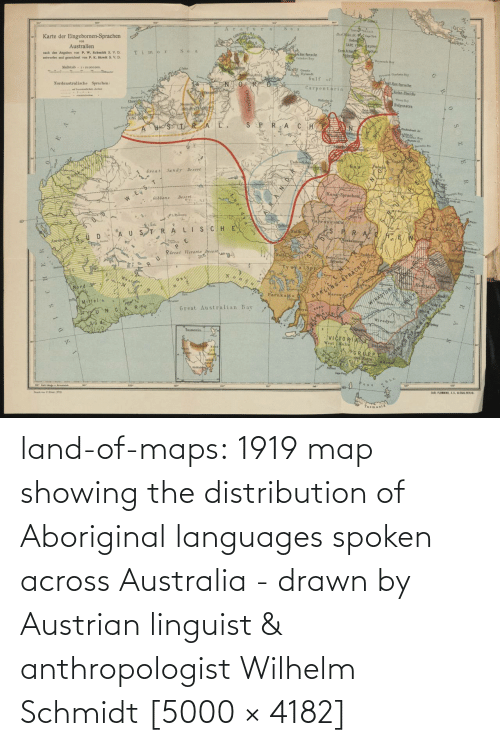 Tumblr, Australia, and Blog: land-of-maps:  1919 map showing the distribution of Aboriginal languages spoken across Australia - drawn by Austrian linguist & anthropologist Wilhelm Schmidt [5000 × 4182]