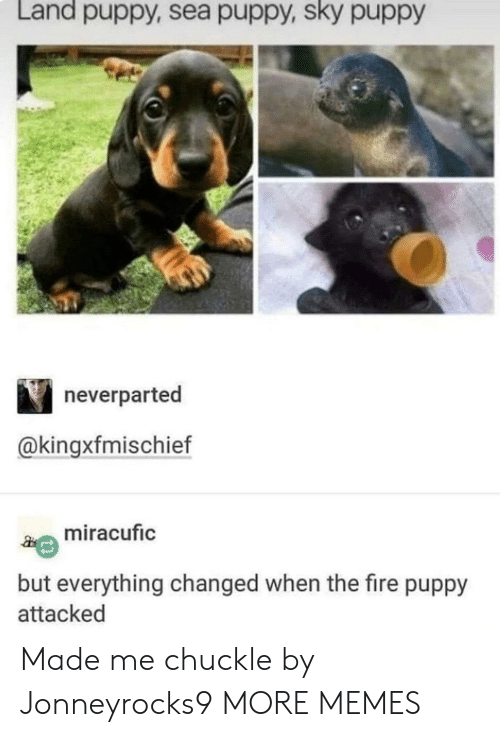 Dank, Fire, and Memes: Land puppy, sea puppy, sky puppy  neverparted  @kingxfmischief  miracufic  but everything changed when the fire puppy  attacked Made me chuckle by Jonneyrocks9 MORE MEMES
