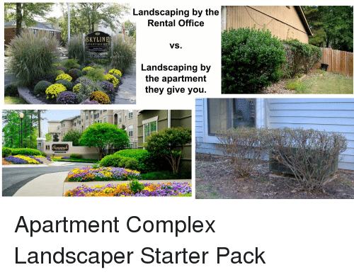 Landscaping By The Rental Office Skyline Rtm Vs Landscaping By The