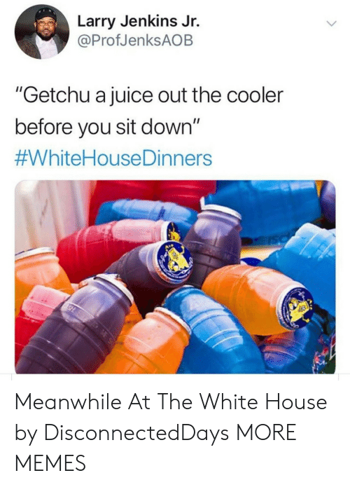 """Jenkins: Larry Jenkins Jr.  @ProfJenksAOB  """"Getchu a juice out the cooler  before you sit down""""  Meanwhile At The White House by DisconnectedDays MORE MEMES"""