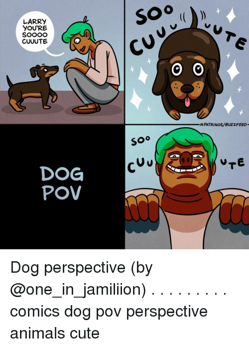 Animals, Cute, and Memes: LARRY  YOU'RE  SOooO  CUUUTE  MPATRİ NOS/ BUZZFEED  soo  U v  DOG  POV Dog perspective (by @one_in_jamiliion) . . . . . . . . . comics dog pov perspective animals cute