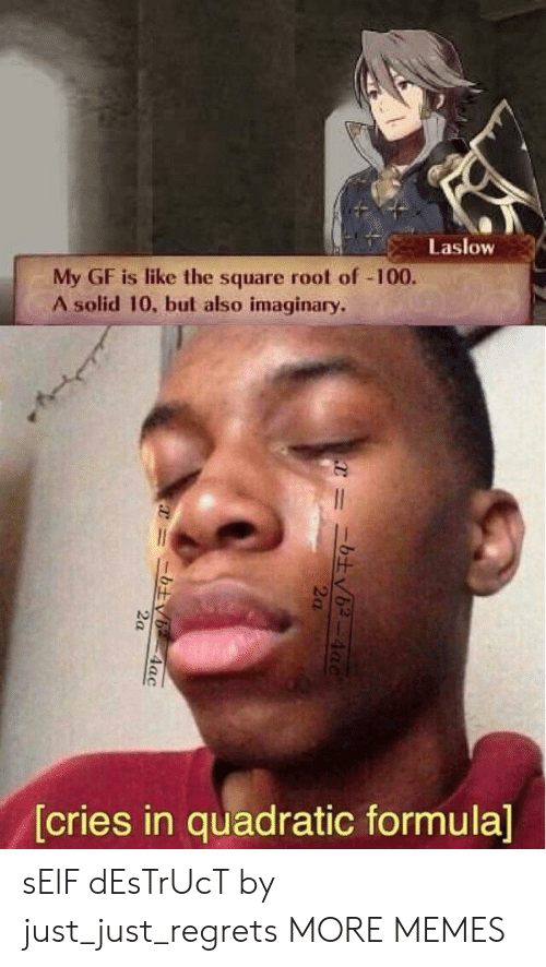 Dank, Memes, and Target: Laslow  My GF is like the square root of -100.  A solid 10, but also imaginary.  [cries in quadratic formula]  4ac  2a  =ニ土v6-4ac sElF dEsTrUcT by just_just_regrets MORE MEMES