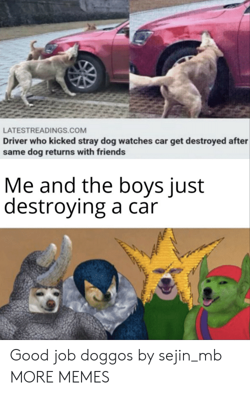 Dank, Friends, and Memes: LATESTREADINGS.COM  Driver who kicked stray dog watches car get destroyed after  same dog returns with friends  Me and the boys just  destroying a car Good job doggos by sejin_mb MORE MEMES