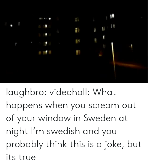Scream, Target, and True: laughbro:  videohall:  What happens when you scream out of your window in Sweden at night  I'm swedish and you probably think this is a joke, but its true