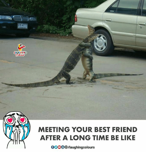 Be Like, Best Friend, and Best: LAUGHIN  MEETING YOUR BEST FRIEND  AFTER A LONG TIME BE LIKE  000083/laughingcolours
