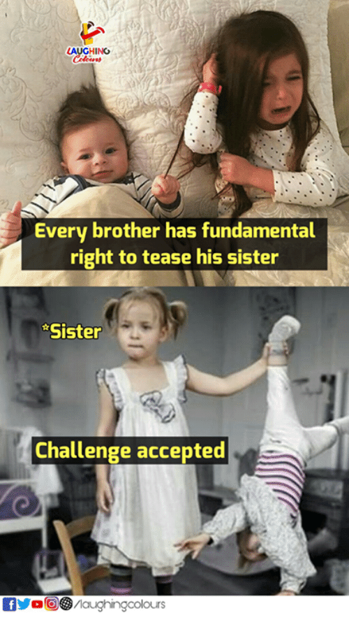tease: LAUGHING  Every brother has fundamental  right to tease his sister  Sister  Challenge accepted