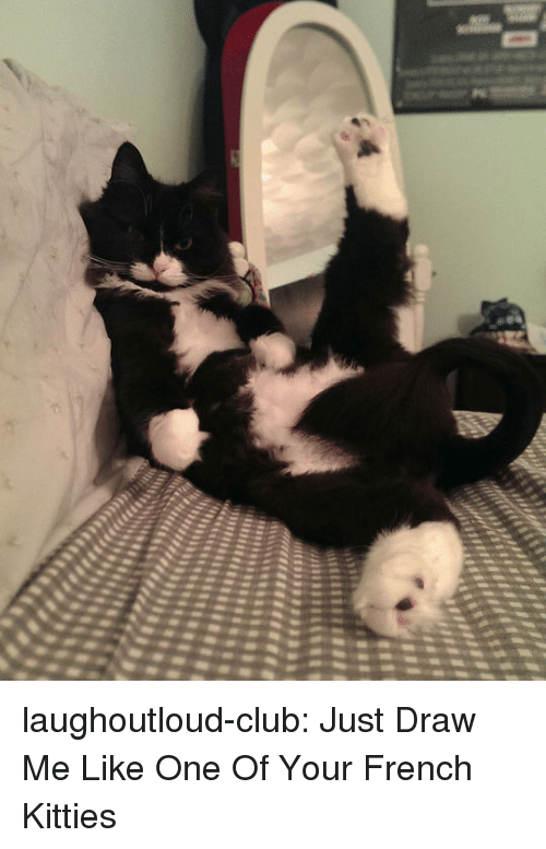 Draw Me Like One Of Your French: laughoutloud-club:  Just Draw Me Like One Of Your French Kitties
