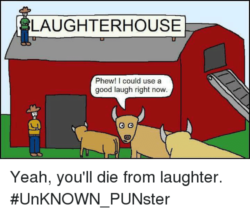 9e9cb7129 LAUGHTERHOUSE Phew! I Could Use a Good Laugh Right Now CD Yeah You ...