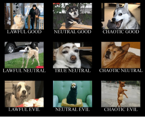 lawful good neutral good chaotic good lawful neutraltrue neutral chaotic 28627804 lawful good neutral good chaotic good lawful neutraltrue neutral
