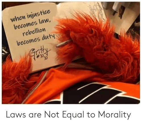 Laws: Laws are Not Equal to Morality
